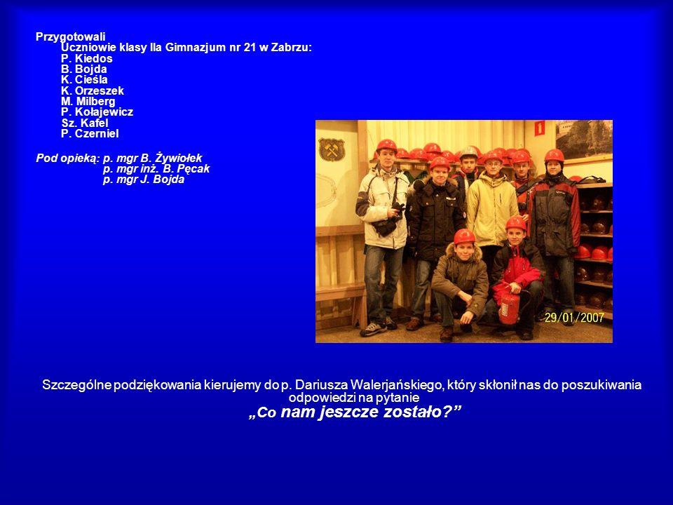 Przygotowali Uczniowie klasy IIa Gimnazjum nr 21 w Zabrzu: P. Kiedos B