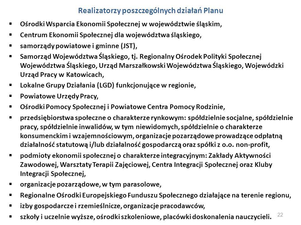 Realizatorzy poszczególnych działań Planu
