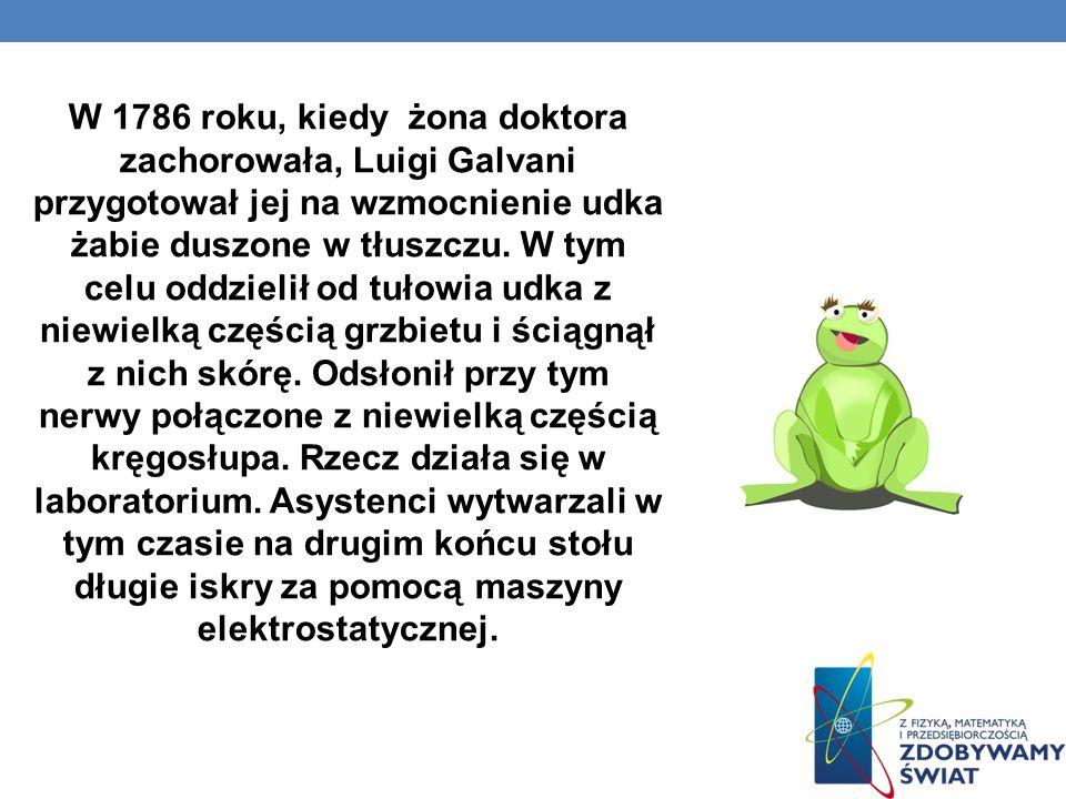 W 1786 roku, kiedy żona doktora zachorowała, Luigi Galvani przygotował jej na wzmocnienie udka żabie duszone w tłuszczu.