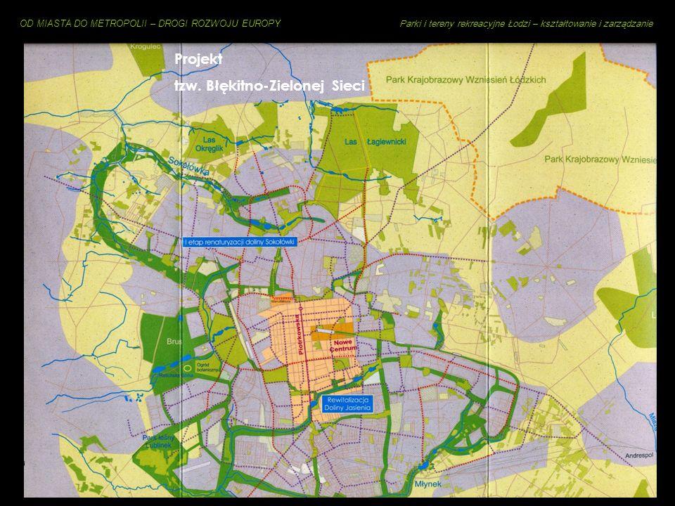 Projekt tzw. Błękitno-Zielonej Sieci