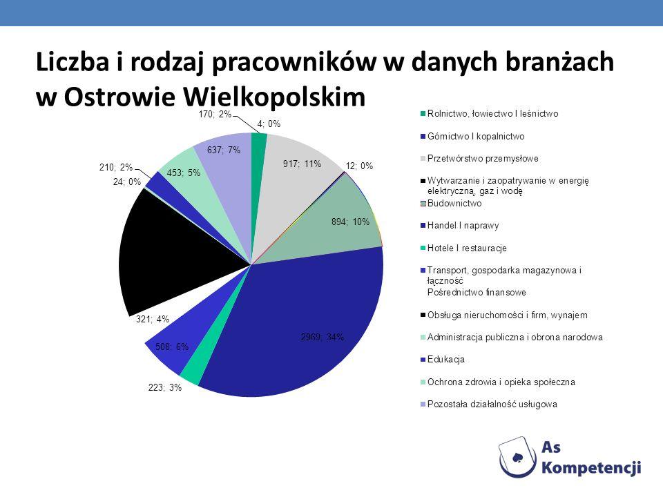 Liczba i rodzaj pracowników w danych branżach w Ostrowie Wielkopolskim