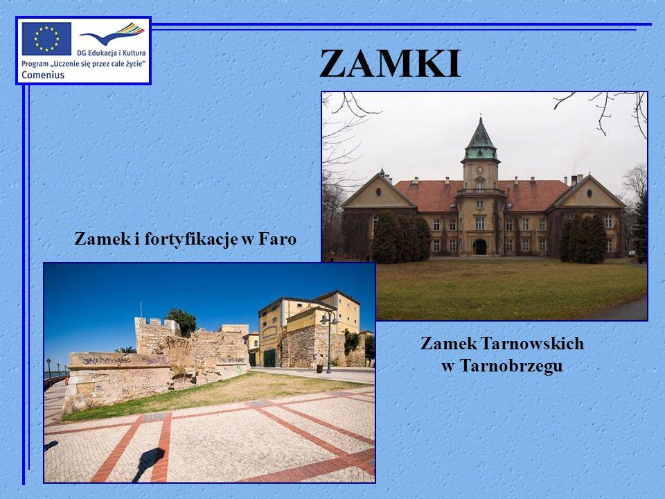 Zamek i fortyfikacje w Faro Zamek Tarnowskich w Tarnobrzegu