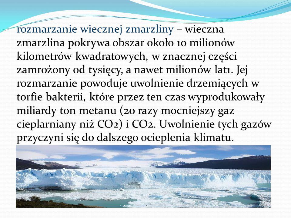 rozmarzanie wiecznej zmarzliny – wieczna zmarzlina pokrywa obszar około 10 milionów kilometrów kwadratowych, w znacznej części zamrożony od tysięcy, a nawet milionów lat1.