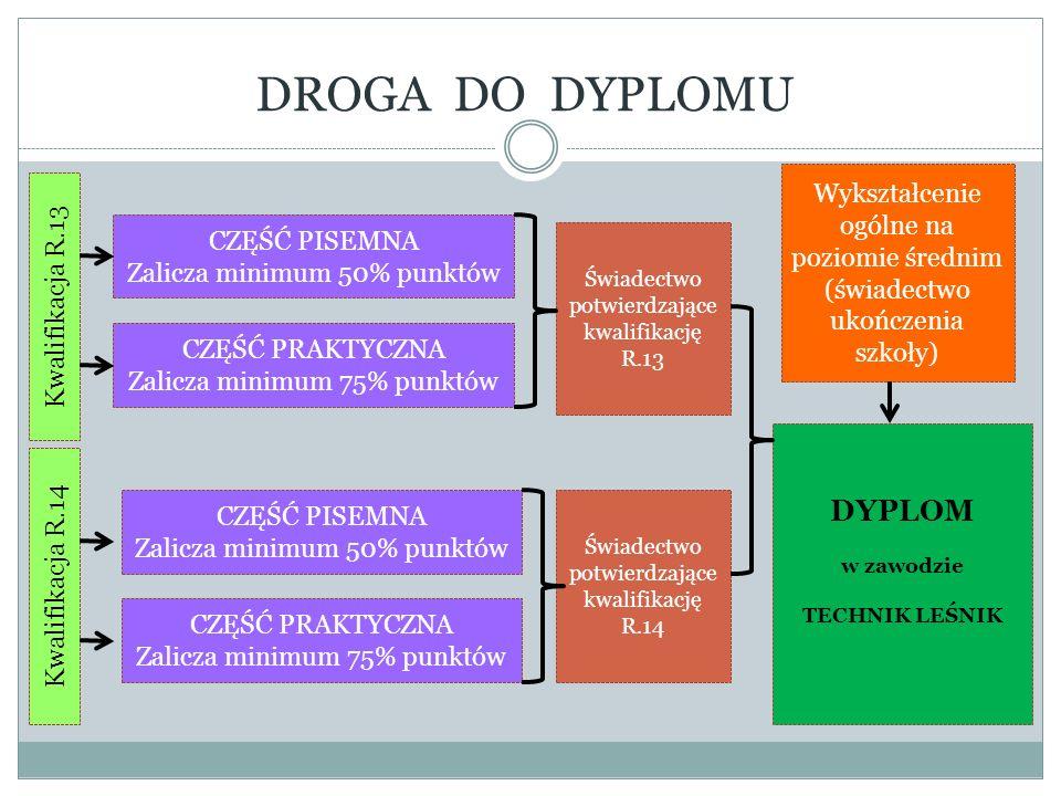 DROGA DO DYPLOMU DYPLOM