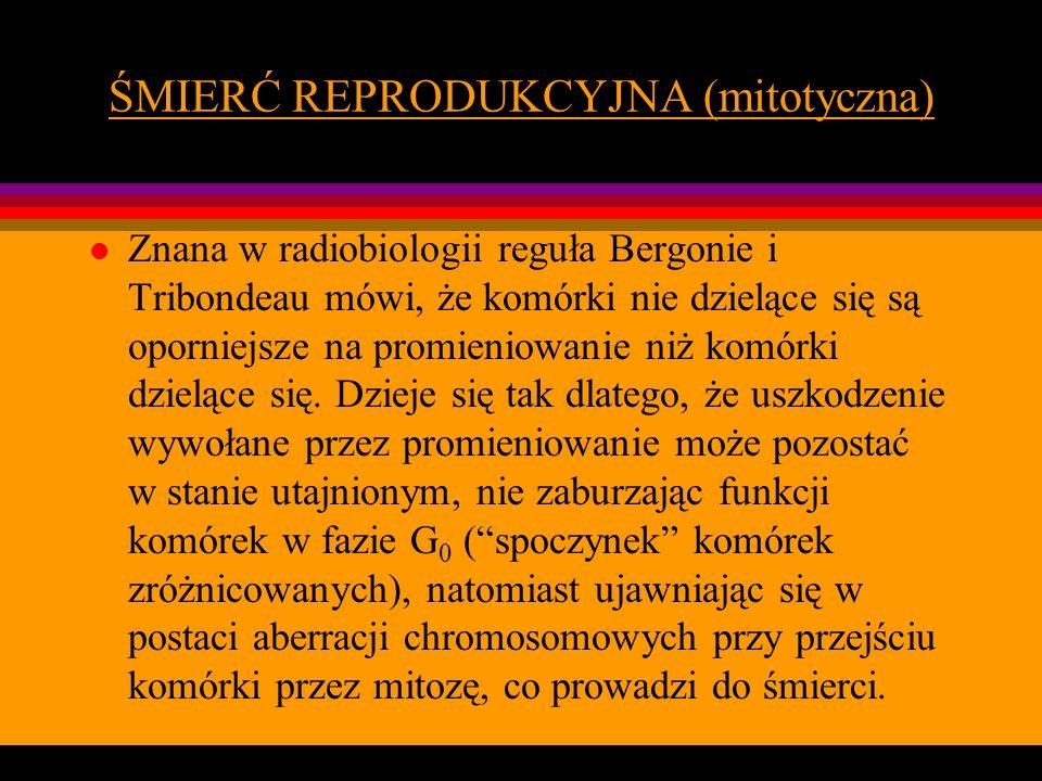 ŚMIERĆ REPRODUKCYJNA (mitotyczna)