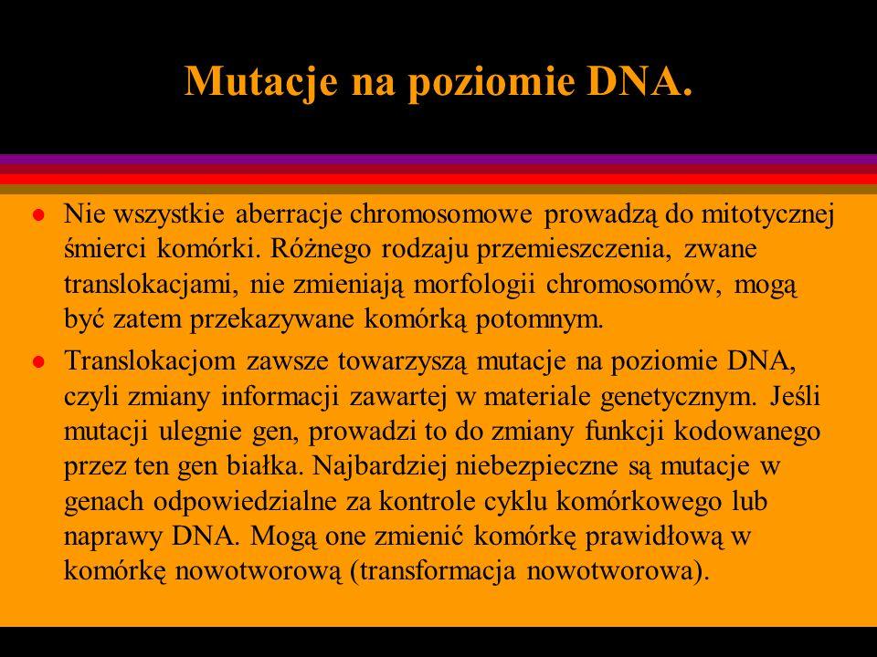 Mutacje na poziomie DNA.