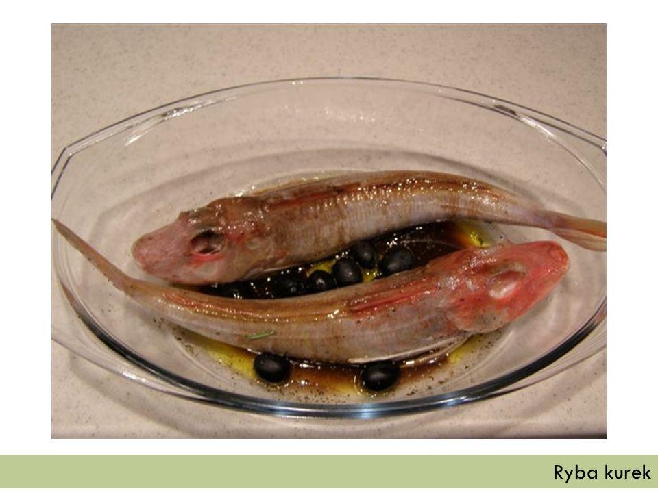 Ryba kurek
