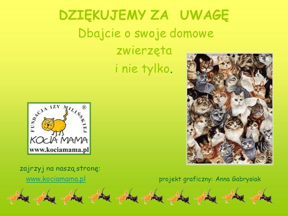 DZIĘKUJEMY ZA UWAGĘ Dbajcie o swoje domowe zwierzęta i nie tylko.