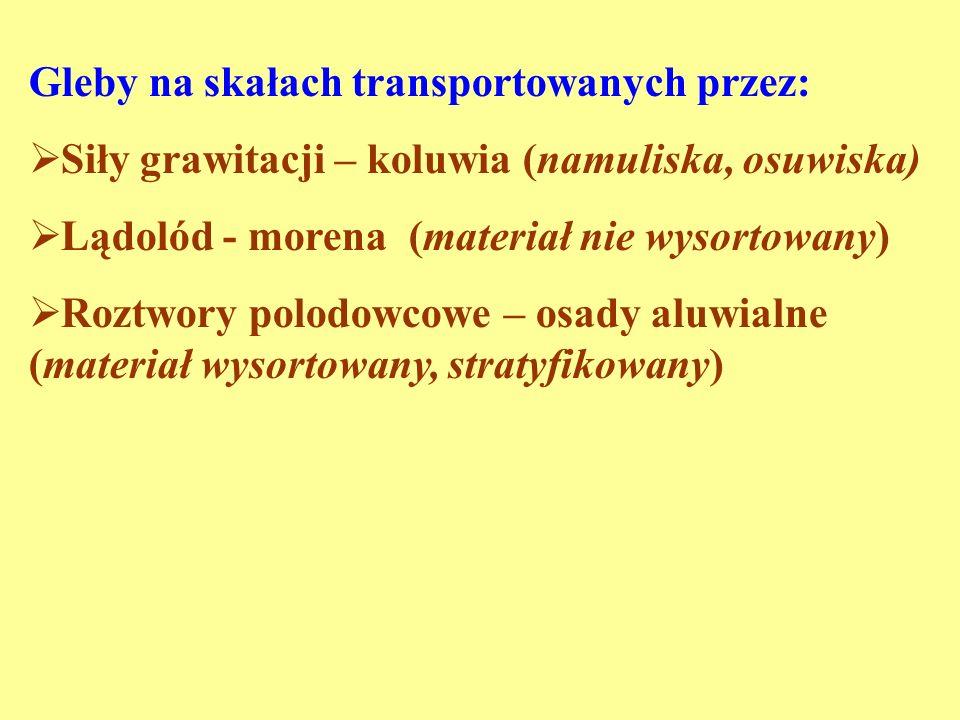 Gleby na skałach transportowanych przez: