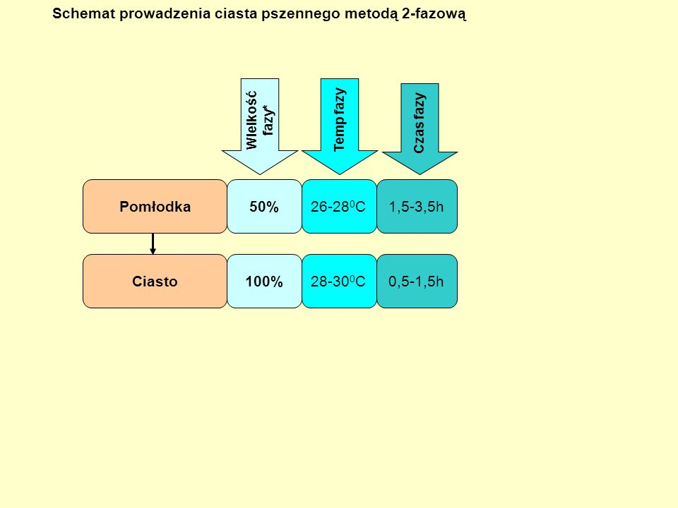 Schemat prowadzenia ciasta pszennego metodą 2-fazową
