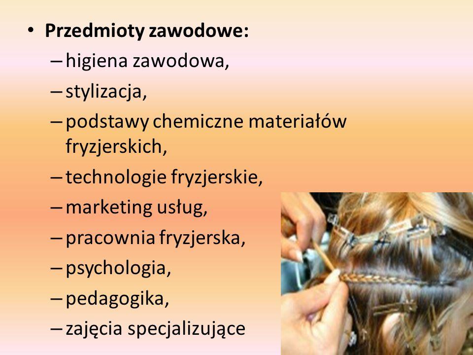 Przedmioty zawodowe: higiena zawodowa, stylizacja, podstawy chemiczne materiałów fryzjerskich, technologie fryzjerskie,