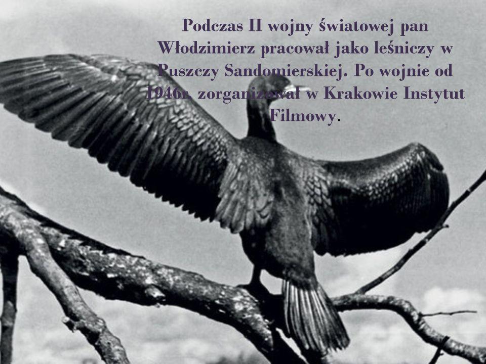 Podczas II wojny światowej pan Włodzimierz pracował jako leśniczy w Puszczy Sandomierskiej.