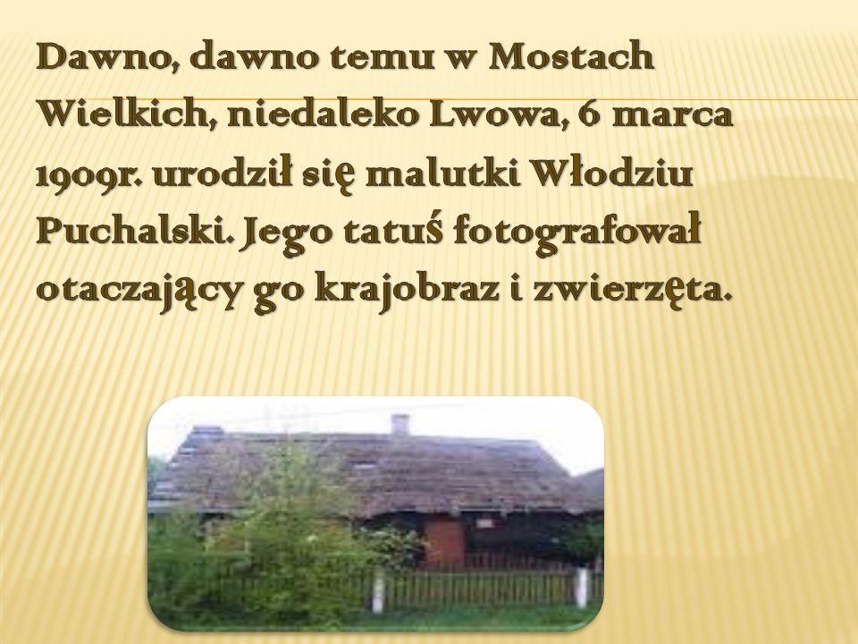 Dawno, dawno temu w Mostach Wielkich, niedaleko Lwowa, 6 marca 1909r
