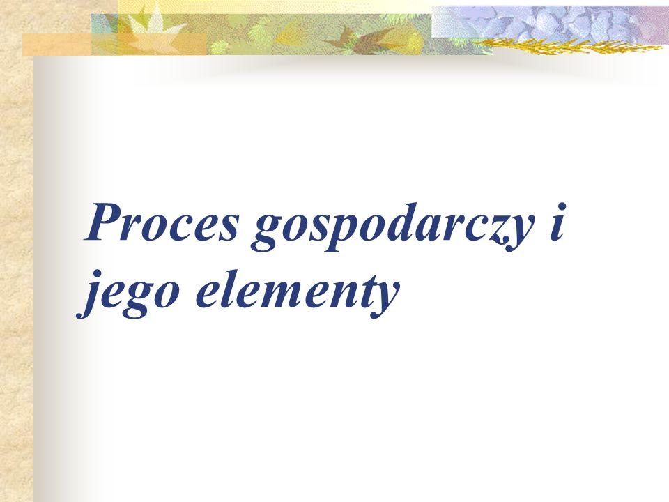 Proces gospodarczy i jego elementy