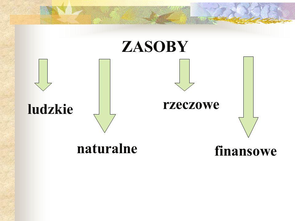 ZASOBY rzeczowe ludzkie naturalne finansowe