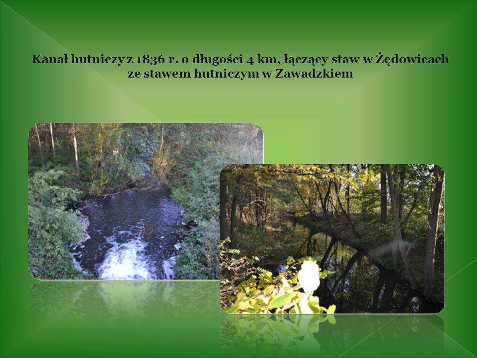 Kanał hutniczy z 1836 r. o długości 4 km, łączący staw w Żędowicach ze stawem hutniczym w Zawadzkiem
