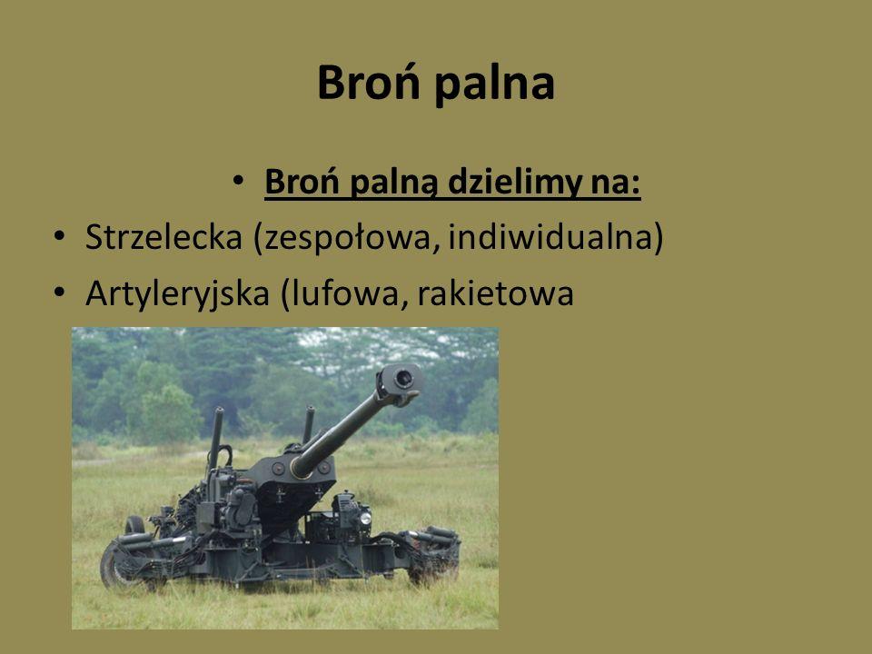Broń palną dzielimy na: