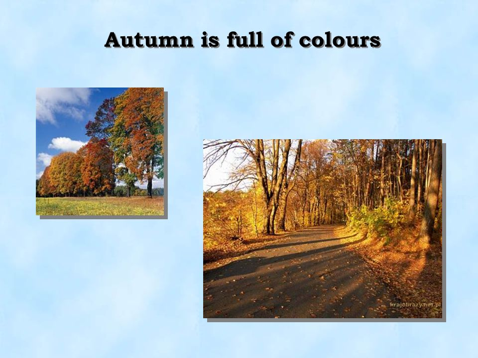 Autumn is full of colours