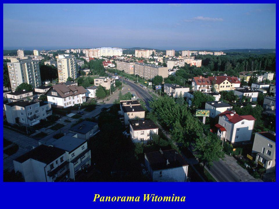 Panorama Witomina