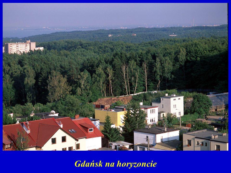 Gdańsk na horyzoncie