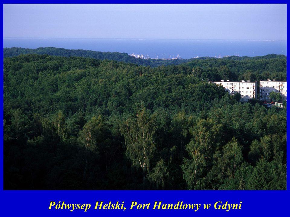 Półwysep Helski, Port Handlowy w Gdyni