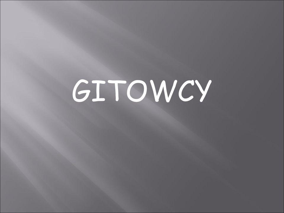 GITOWCY