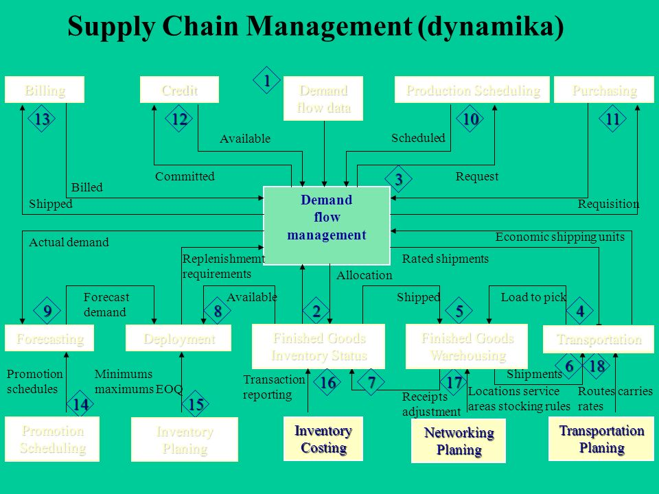 Supply Chain Management (dynamika)