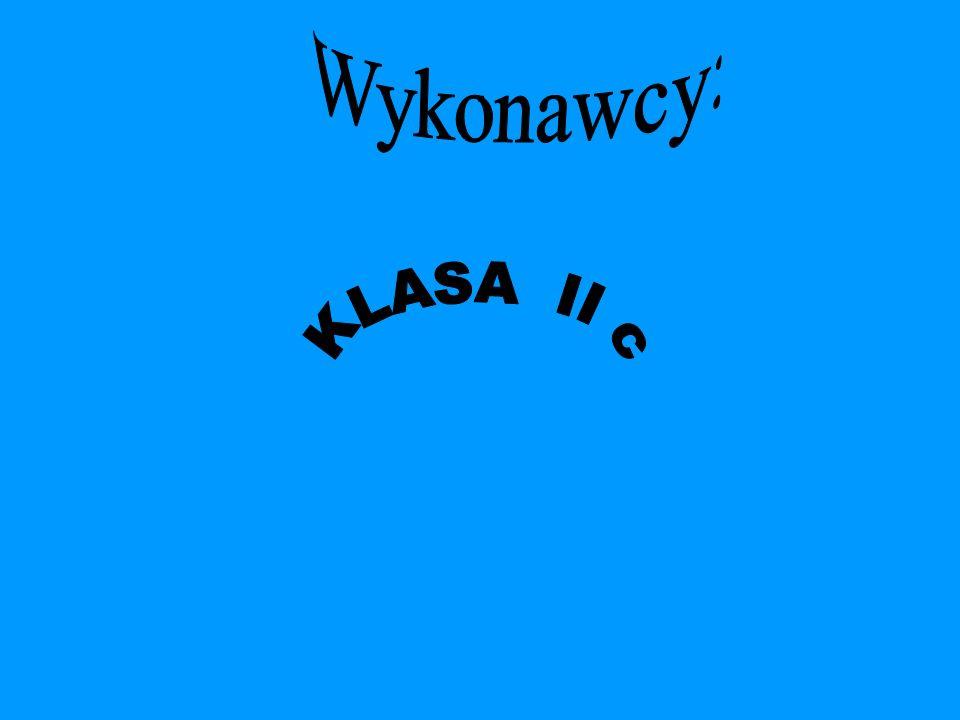 . Wykonawcy: KLASA II c