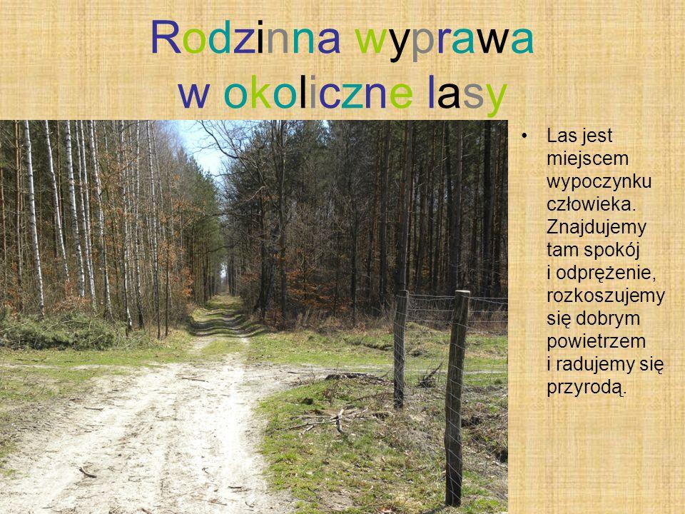 Rodzinna wyprawa w okoliczne lasy
