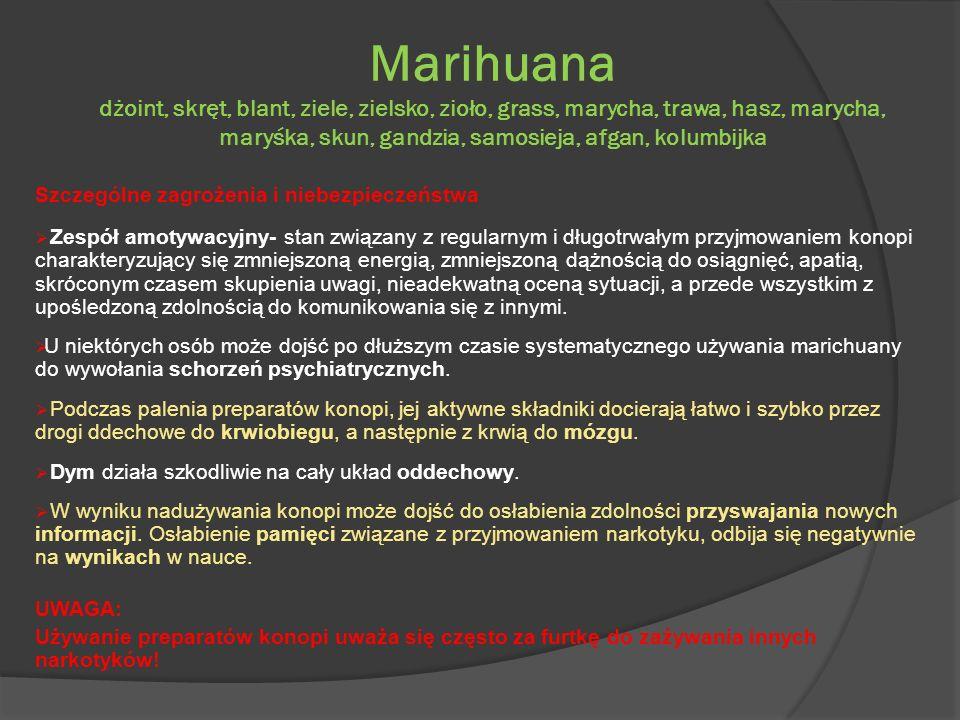 Marihuana dżoint, skręt, blant, ziele, zielsko, zioło, grass, marycha, trawa, hasz, marycha, maryśka, skun, gandzia, samosieja, afgan, kolumbijka