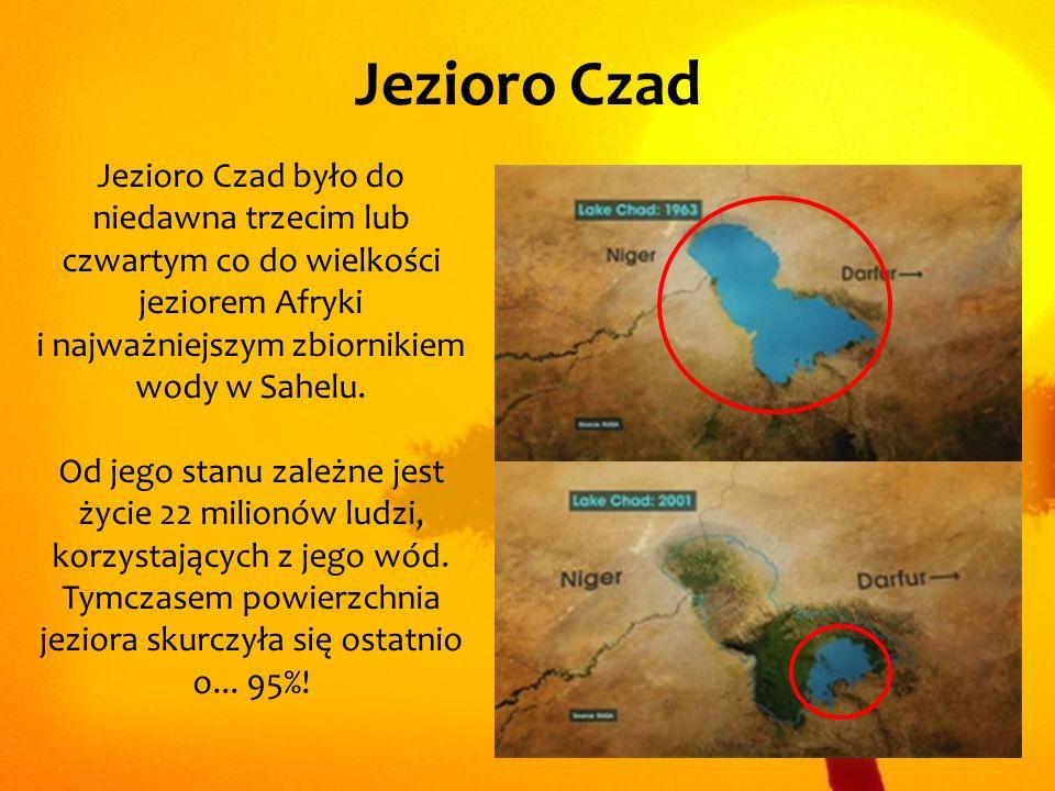 Jezioro Czad Jezioro Czad było do niedawna trzecim lub czwartym co do wielkości jeziorem Afryki i najważniejszym zbiornikiem wody w Sahelu.