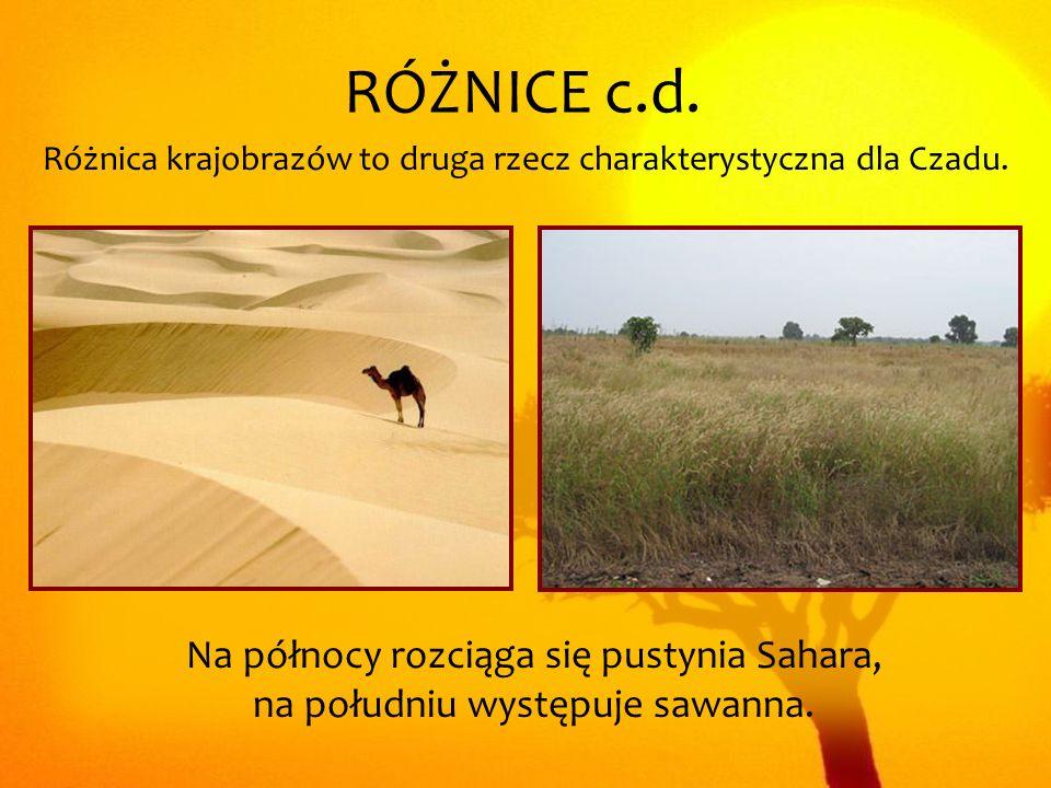 Różnica krajobrazów to druga rzecz charakterystyczna dla Czadu.