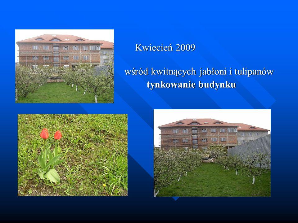 wśród kwitnących jabłoni i tulipanów tynkowanie budynku