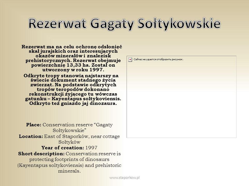 Rezerwat Gagaty Sołtykowskie