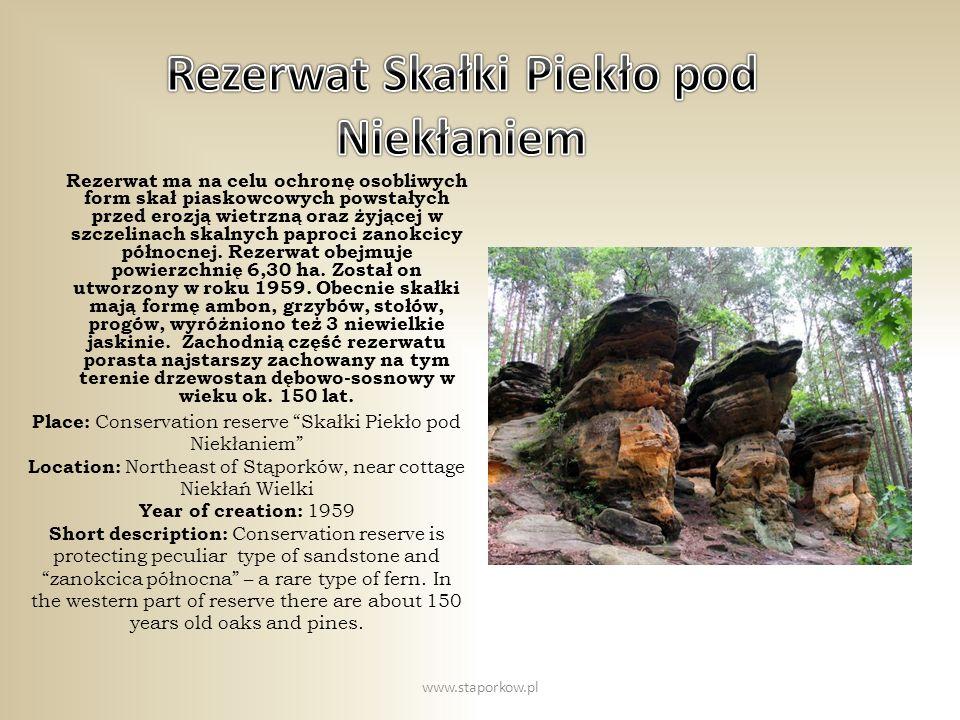Rezerwat Skałki Piekło pod Niekłaniem