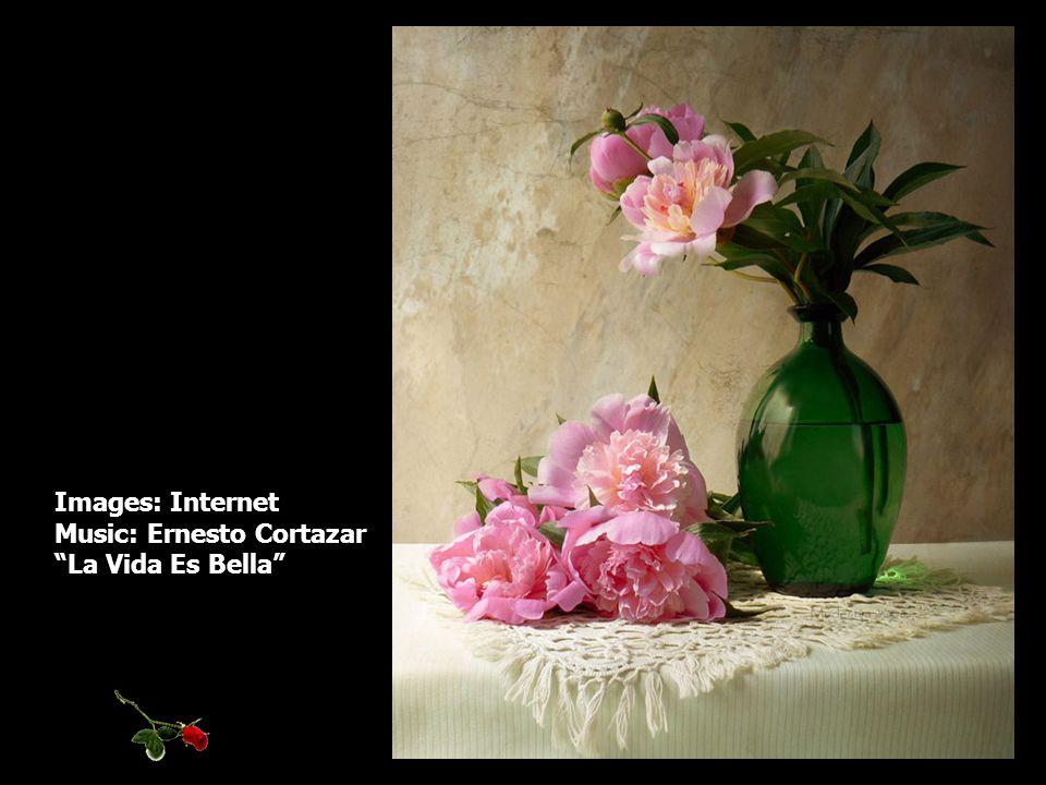 Images: Internet Music: Ernesto Cortazar La Vida Es Bella