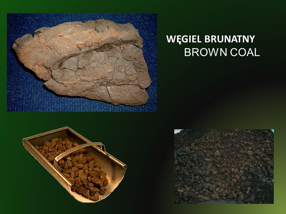 WĘGIEL BRUNATNY BROWN COAL