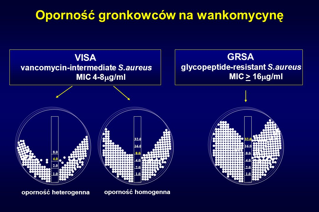 Oporność gronkowców na wankomycynę