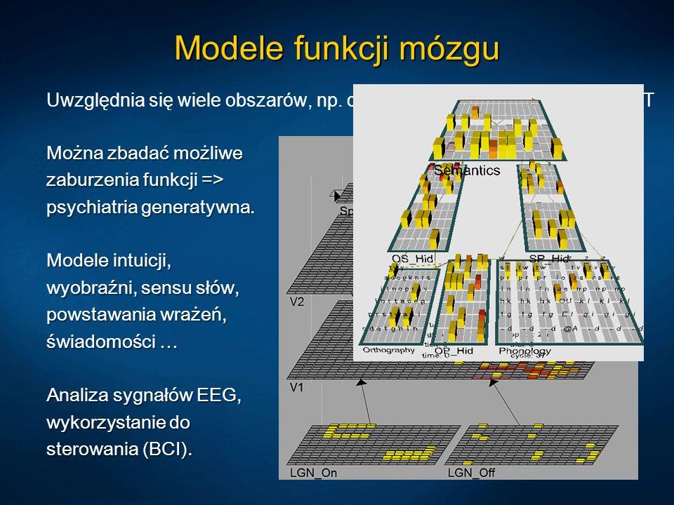Modele funkcji mózgu Uwzględnia się wiele obszarów, np. dla wzroku LGN, V1, V2, V4/IT, V5/MT.