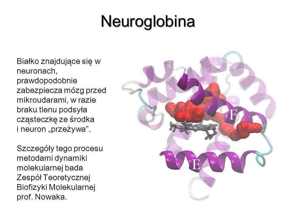 * 07/16/96. Neuroglobina.