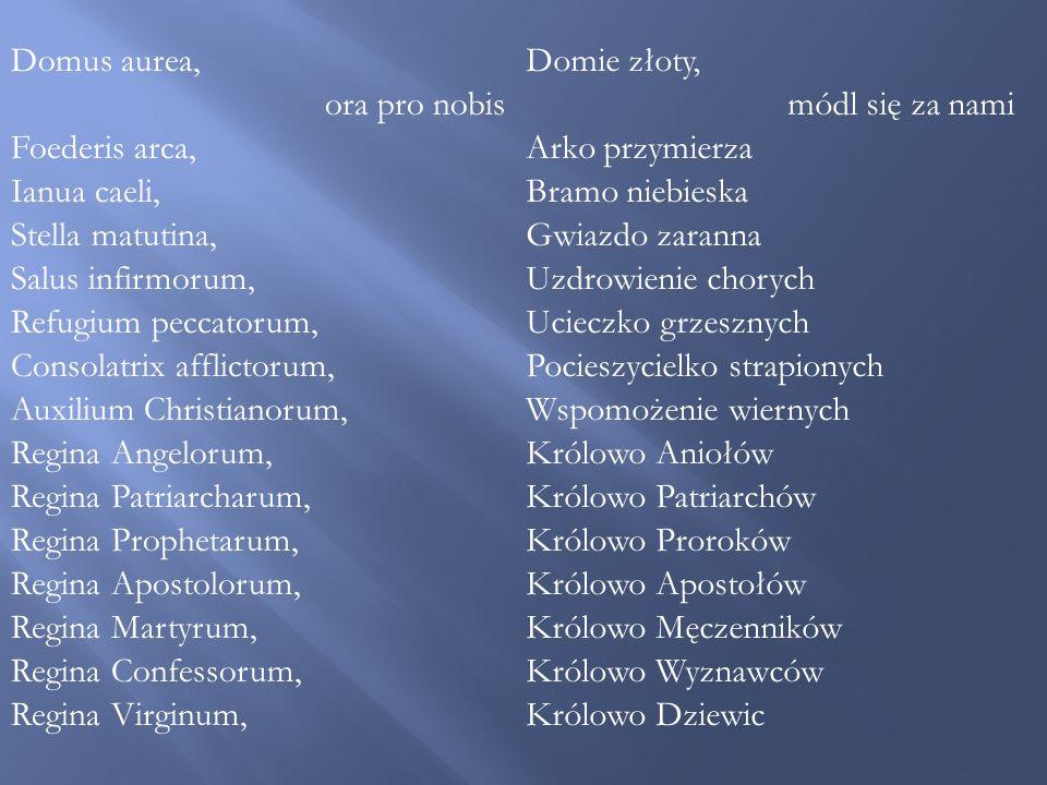 Domus aurea, ora pro nobis. Foederis arca, Ianua caeli, Stella matutina, Salus infirmorum, Refugium peccatorum,