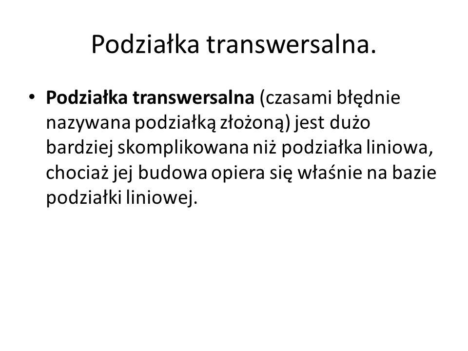 Podziałka transwersalna.