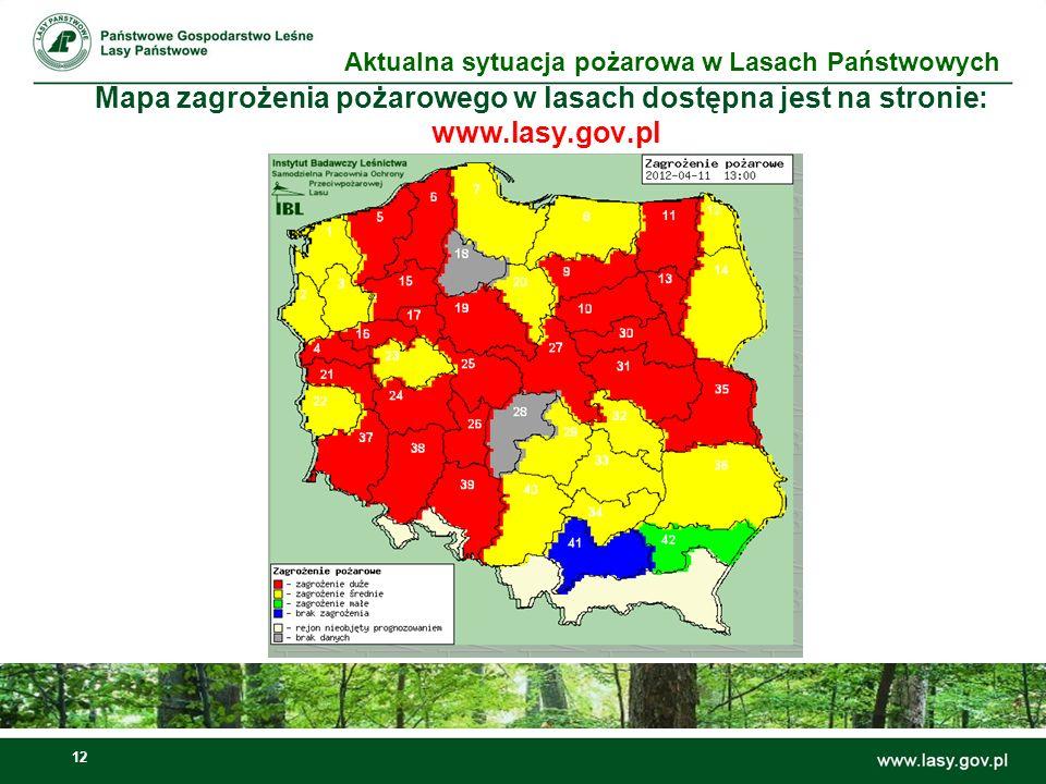 Aktualna sytuacja pożarowa w Lasach Państwowych