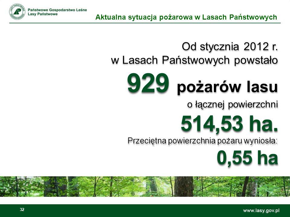 929 pożarów lasu o łącznej powierzchni 514,53 ha.