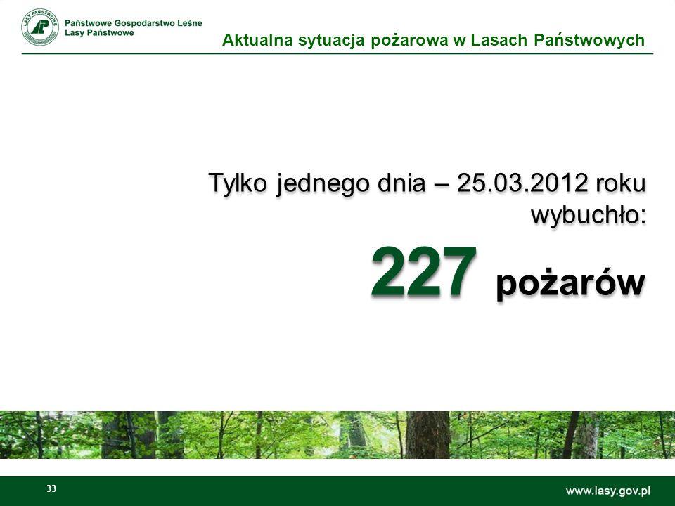 227 pożarów Tylko jednego dnia – 25.03.2012 roku wybuchło: