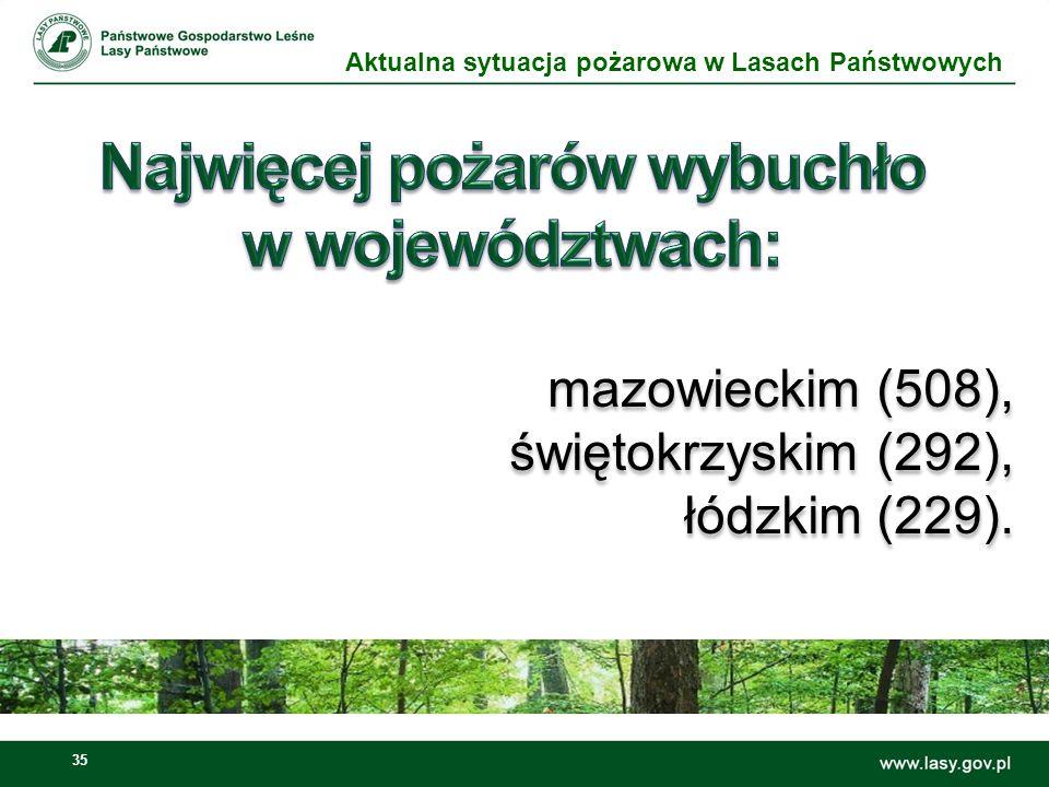 Najwięcej pożarów wybuchło w województwach: