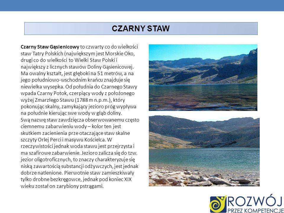 CZARNY STAW