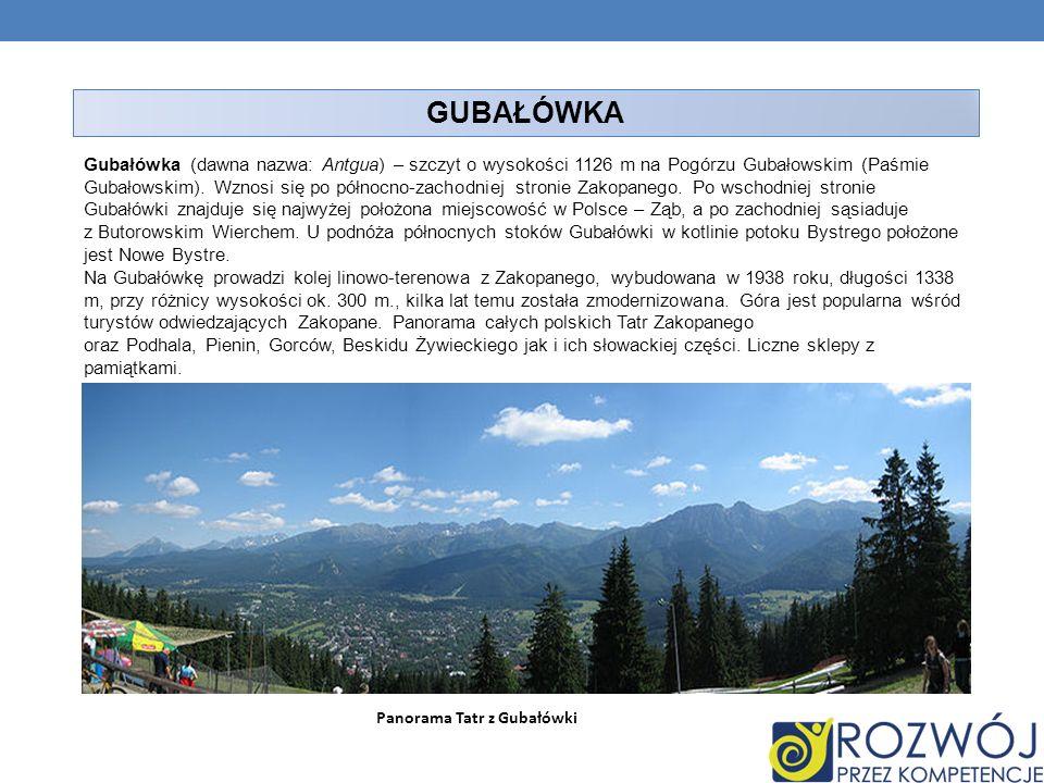 Panorama Tatr z Gubałówki