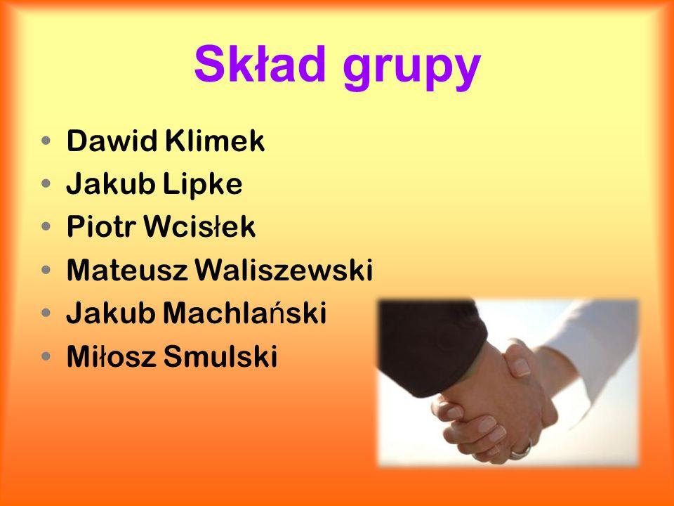 Skład grupy Dawid Klimek Jakub Lipke Piotr Wcisłek Mateusz Waliszewski