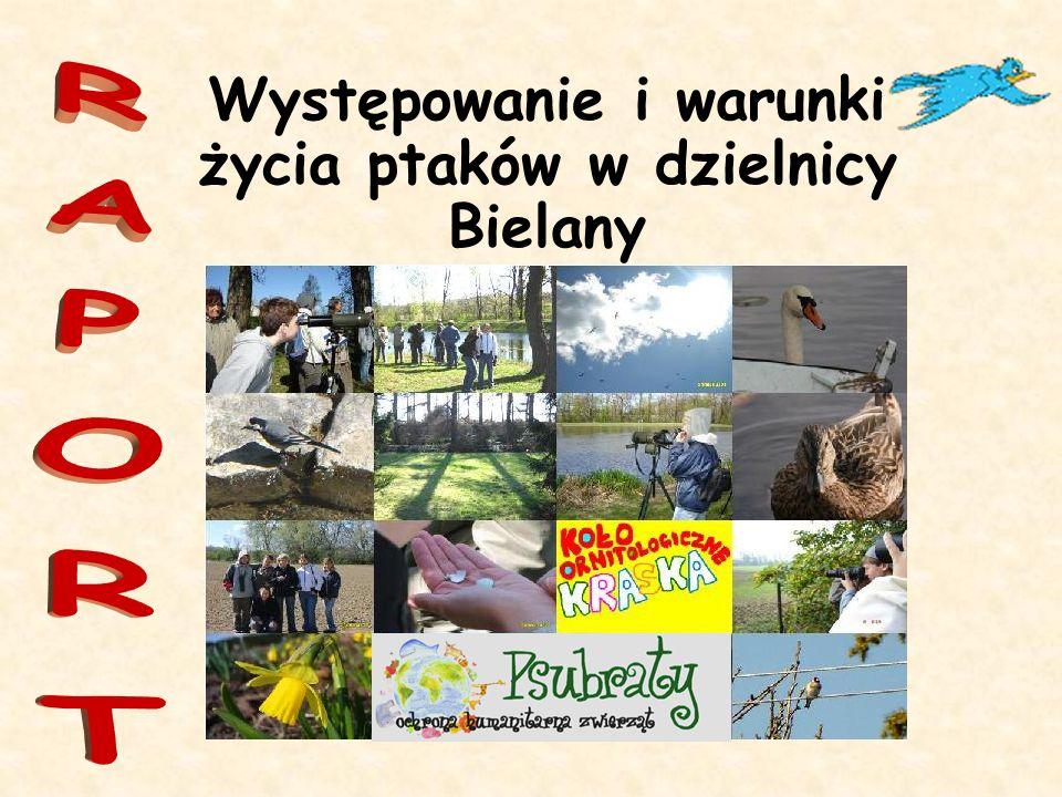 Występowanie i warunki życia ptaków w dzielnicy Bielany